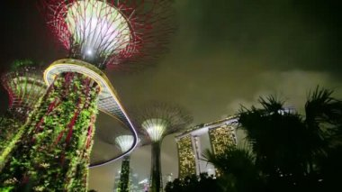 SINGAPORE - CIRCA DEC 2013: Gardens by the Bay at hight. Panorama with glowing super-trees against the night sky — Stock Video