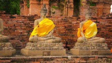 Video 1920x1080 - Buddha statues in an old Buddhist temple. Thailand, Ayutthaya, Wat Yai Chaimongkhon — Stock Video