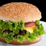 Tasty hamburger — Stock Photo #2050908