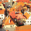 Regenburg roof tops - Stock Photo