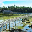 Stock Photo: Viewpoint in oceat Cloud Nine surf point, Siargao island , Philippines