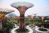 Gardens by the Bay at dusk — Stock Photo