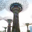 Gardens by the Bay - Foto Stock