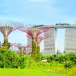 Gardens by the Bay — Stock Photo #31155449