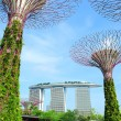 Gardens by the Bay in Singapore — Stock Photo
