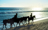People riding a horses on the beach of Bali — Stock Photo