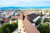 Ljubljana Castle  — Stock Photo