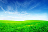 Green field — Foto de Stock