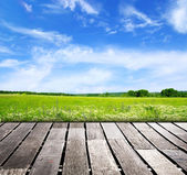 Blue sky and wood floor background — Stock fotografie