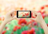 Mulher toma a foto com telefone celular móvel — Foto Stock