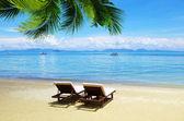 Plage et mer tropicale — Photo
