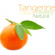 Tangerine — Stock Photo #13675471