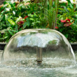 Small Fountain  — Stock Photo