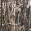 Wood texture — Stock Photo #16643147