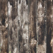 Wood texture — Stock Photo #16643173