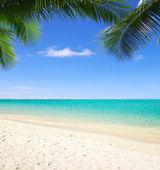 Tropické moře — Stock fotografie