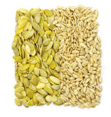 семена — Стоковое фото