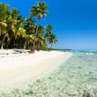 Beach with palm trees — Stockfoto