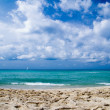 Sea beach — Stockfoto