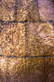 Bronze metal texture — Stock Photo