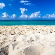 Caribbean sea beach — Stockfoto