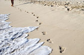 Footprints in beach — Stock Photo