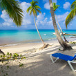 Beach chairs under palm — Stock Photo