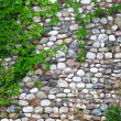 Stone fence background — Stock Photo