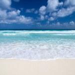 Beach — Stock Photo #27527293