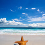 Tropical sea — Stock fotografie #28710877
