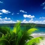 Tropical sea — Stock Photo #28711103