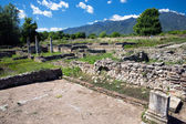 Ruins in Dion, Greece. — Stock Photo