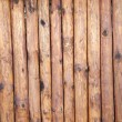 Wood background — Stock Photo #31199979