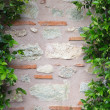 Plant over brick wall — Stock Photo #34171795