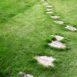 Stock Photo: Garden stone path