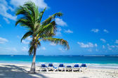 Caribbean Beach — Stock Photo
