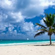 Caribbean Beach — Stock Photo #41249985