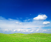 Field on a background of the blue sky — Stock Photo