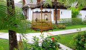 Garden stone path with grass — Stock Photo