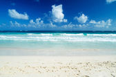 Tropiska havet — Stockfoto