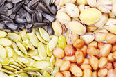 Seeds and nuts — Stock Photo
