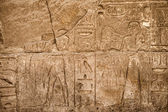Hieroglyphic of pharaoh civilization — Stock Photo