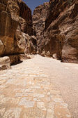 Al-Siq in Petra, Jordan — Stock Photo