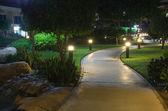 I trädgården — Stockfoto