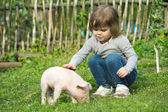 Piglet and girl — Stock Photo