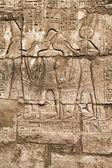 Hieroglyphic of pharaoh civilization — Stock Photo