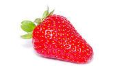 červená jahoda — Stock fotografie
