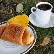 Autumn scene. Coffee and croissant. beautiful day — Stockfoto