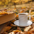 Autumn scene. Coffee cup and books — Photo