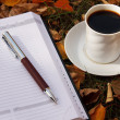 Autumn scene. Coffee cup and books — Стоковое фото